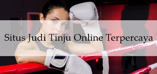 Situs Judi Tinju Online Terpercaya
